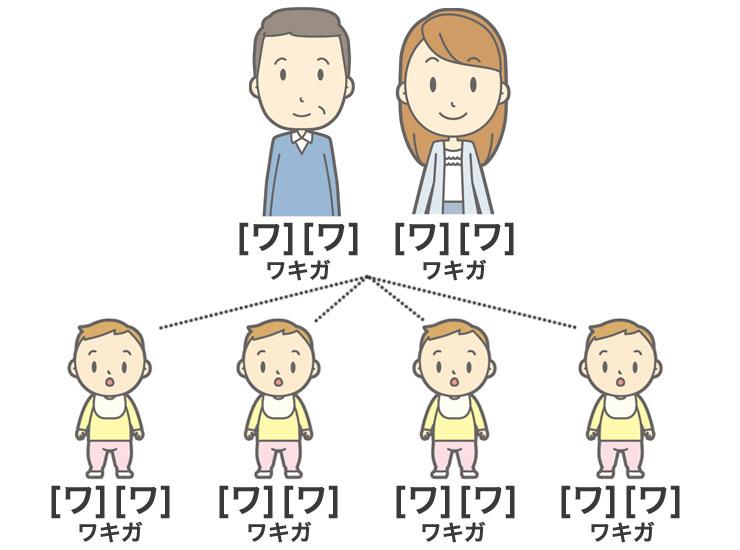 ワキガは子供に遺伝する!?ワキガの優性遺伝や確率について